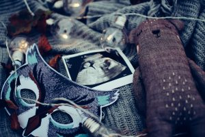 Grief of pregnancy loss
